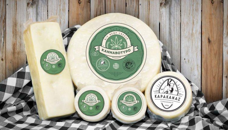 Καρακάνας: έφτιαξε το πρώτο τυρί με βιολογική κάνναβη