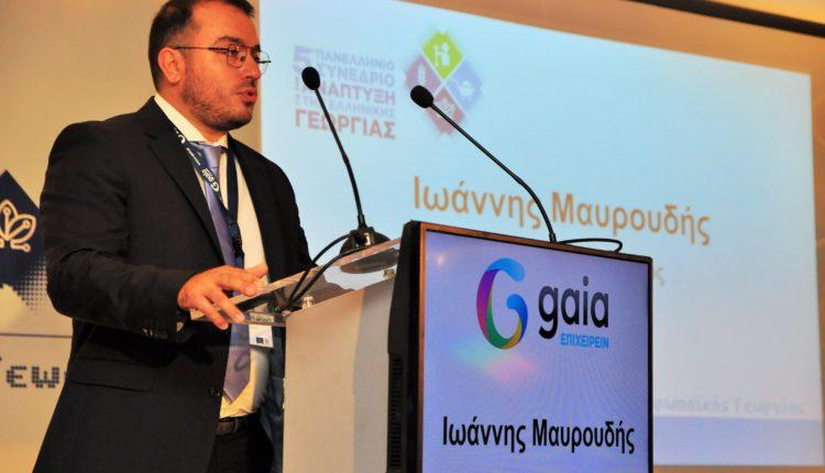 Με νέο στρατηγικό  πλαίσιο αναφοράς η Gaia Επιχειρείν