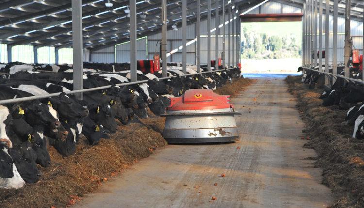 COVID-19 Effect| 'Αναστάτωση' στο γάλα για όλο το 2020